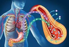 Секс и нарушение эндокринной системы