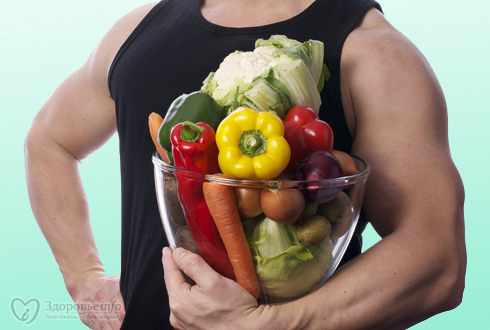 pros and cons of vegetarian diet essay