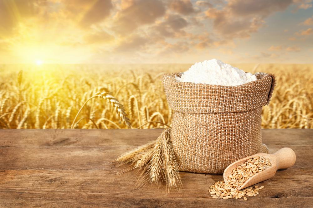 Пшеничная мука: польза или вред — ЗдоровьеИнфо