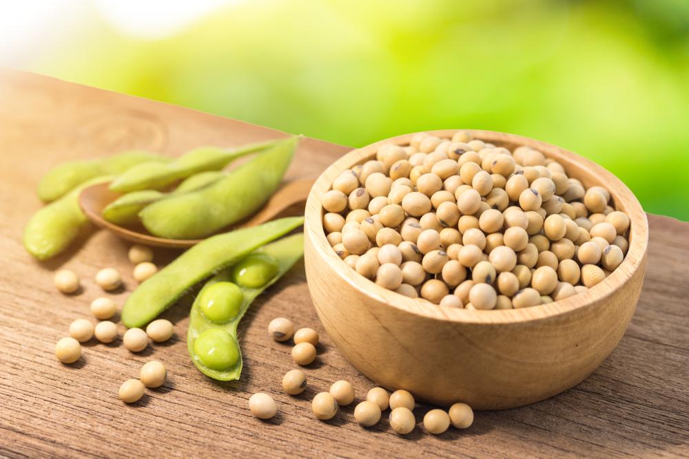 Польза или вред: соевые бобы — ЗдоровьеИнфо